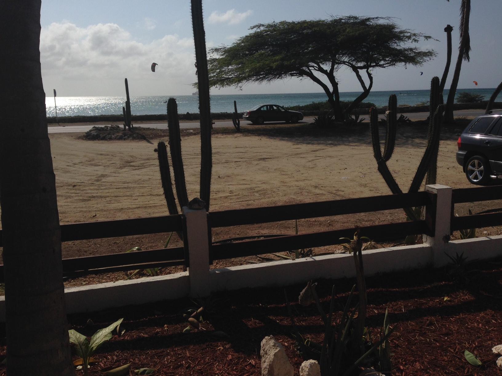 Hello Aruba!